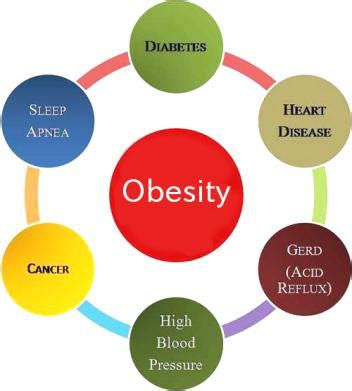 Essay on harmful effects of fast and junk food